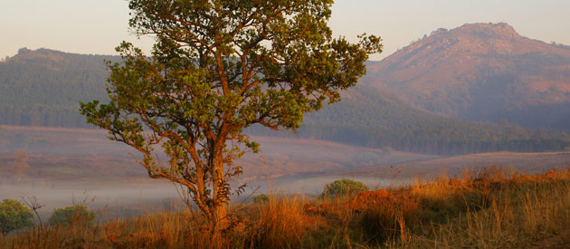 Malkerns is situated in the Manzini region of Swaziland.